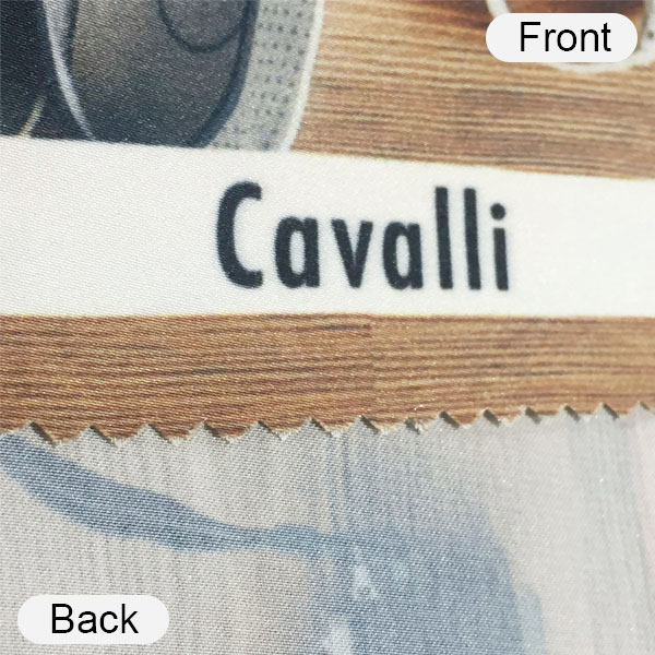 cavalli front and back